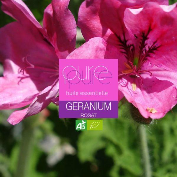 Comment soigner un mycose avec l'HE de Géranium Rosat