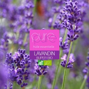 Super Lavandin Organic Essential Oil