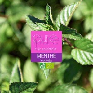 Une huile essentielle contre les hématome : la menthe poivrée