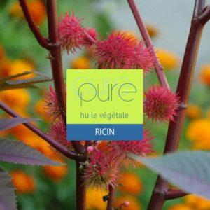 L' huile de Ricin : des bienfaits pour la peau sensible ou abimée